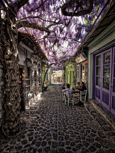 10 самых волшебных улиц в тени цветов и деревьев