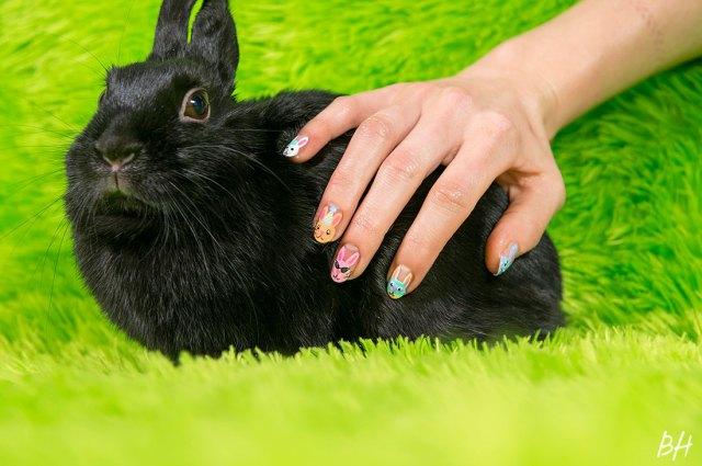 bunny-nails-7