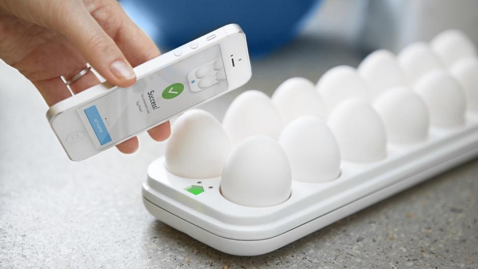 The Egg Minder-1